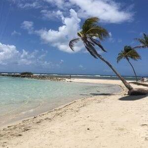 Voyage de luxe Caraïbes cocotiers caraïbes