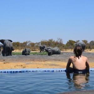 lune de miel mystère Afrique voyage surprise
