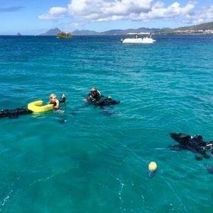 île aux fleurs Plongée rocher du diamant Martinique