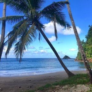 Plage Batibou île caraïbes