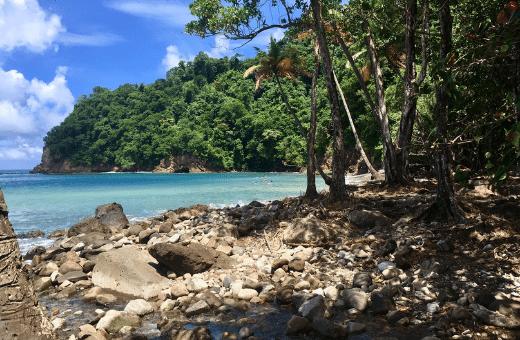 anse couleuvre plage authentique Martinique sable noir sauvage