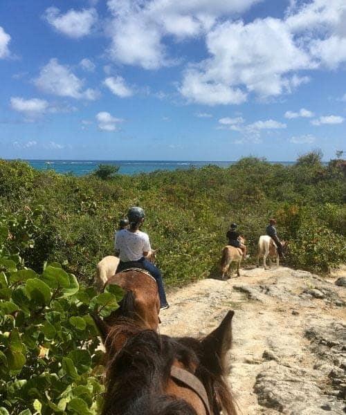 balade à cheval sur la plage Macabou