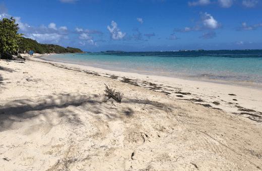 Plages des antilles cap Chevallier Martinique