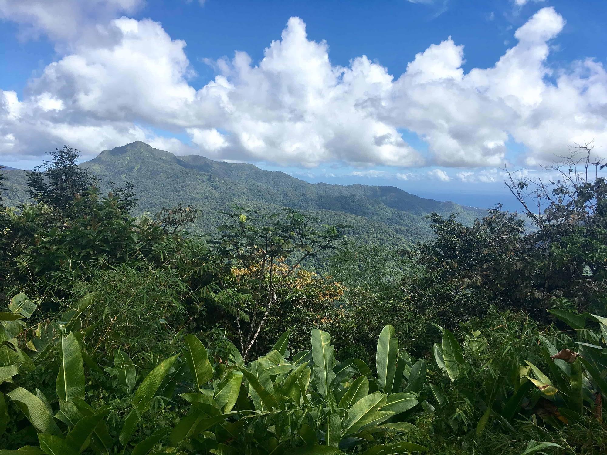 parc des mamelles Guadeloupe balade