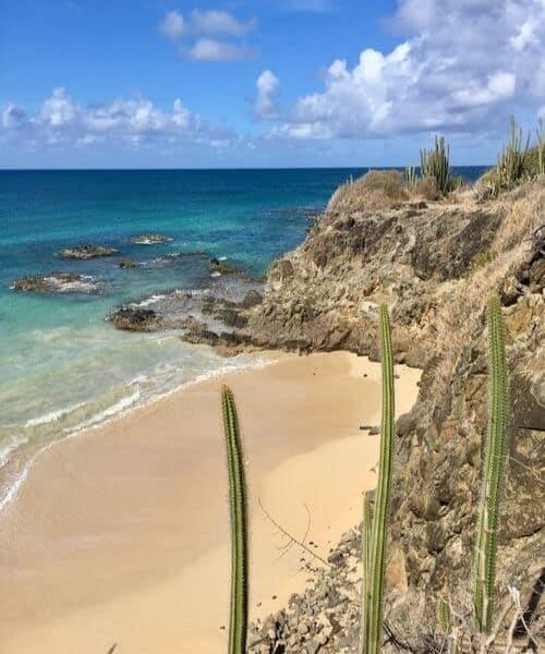 île aux fleurs voyage de luxe antilles Martinique cactus plage sable blanc