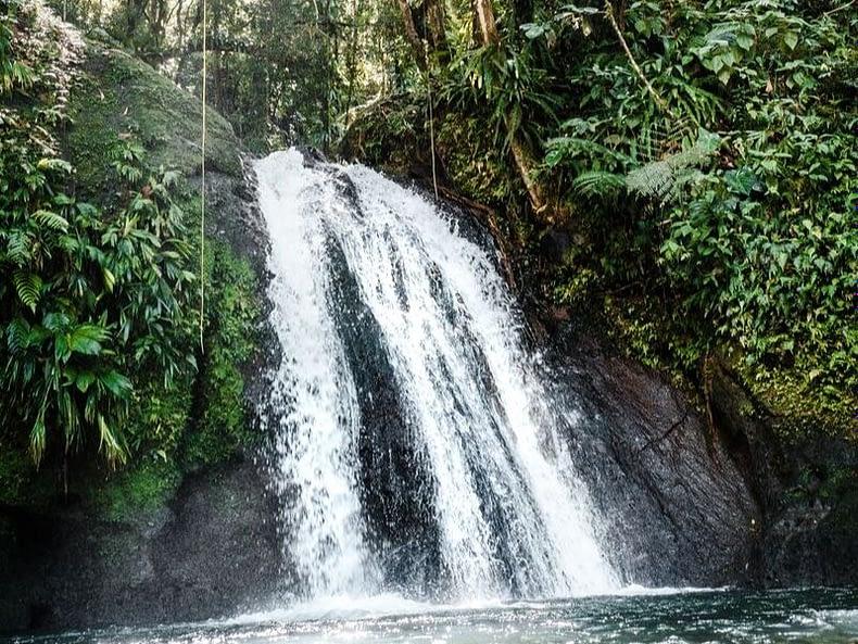 Dominique chutes d'eau cascades