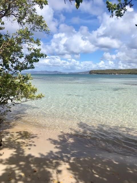 plage sable blanc Martinique